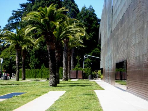 Landscape Architecture at de Young